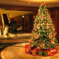 Holiday Gift Guide for Home Interiors Holiday Gift Guide for Home Interiors – Find Out the Perfect Gift! Christmas Tree Decorations Lights HD Wallpaper 120x120