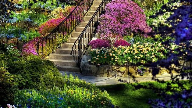 Ideas For My Garden Makeover