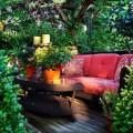 How to Get a Perfect Oudoor Garden How to Get a Perfect Oudoor Garden How to Get a Perfect Oudoor Garden 5 120x120