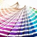 Top 5 Trending Colors for Custom Furniture