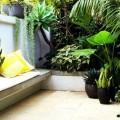 Luxury City Outdoor Gardens Ideas