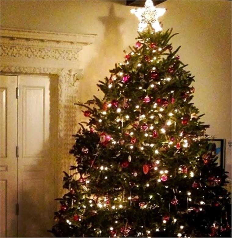 10 Celebrities Christmas Trees Luxury Decorations – Room ...
