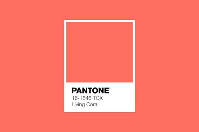 Living Coral - Meet Pantone's 2019 Colour of the Year 2019 Colour of the Year Living Coral – Meet Pantone's 2019 Colour of the Year Living Coral Meet Pantones 2019 Colour of the Year 1