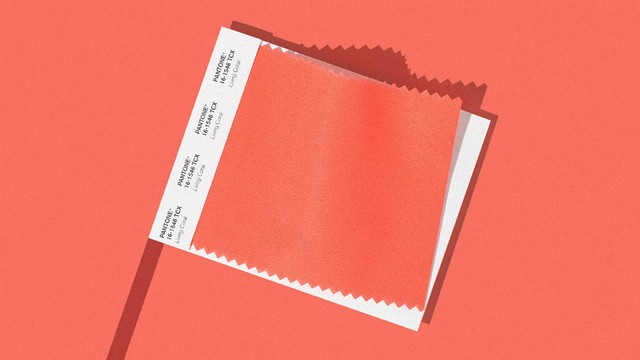 Living Coral - Meet Pantone's 2019 Colour of the Year 2019 Colour of the Year Living Coral – Meet Pantone's 2019 Colour of the Year Living Coral Meet Pantones 2019 Colour of the Year 2