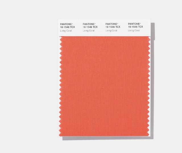 Living Coral - Meet Pantone's 2019 Colour of the Year 2019 Colour of the Year Living Coral – Meet Pantone's 2019 Colour of the Year Living Coral Meet Pantones 2019 Colour of the Year 4